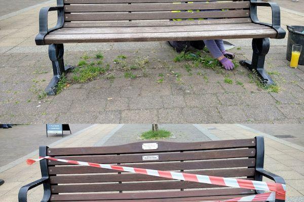 benches-10-06-21b2C54EAC5-AF9F-7129-FDB9-827DD1AC8FA8.jpg