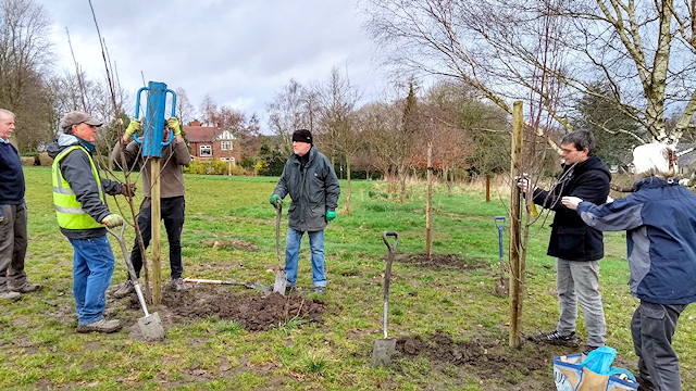 Planting of trees on Tuesday 18 February
